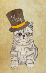 Funny Cute Kitten Cat Sketch Monocle and Top