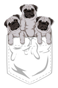 Pocket Pug by kellabell9