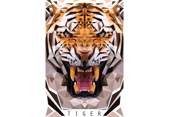 cubic tiger  Artwork