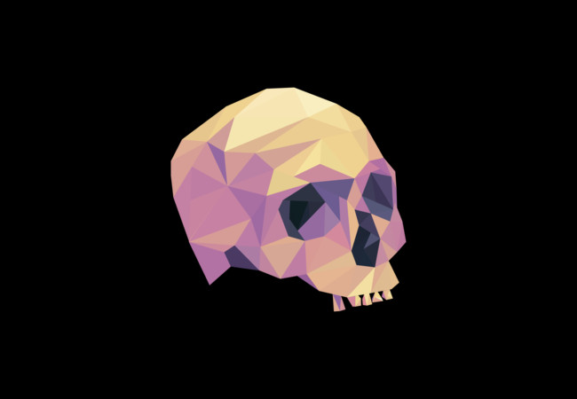 GeoSkull  Artwork