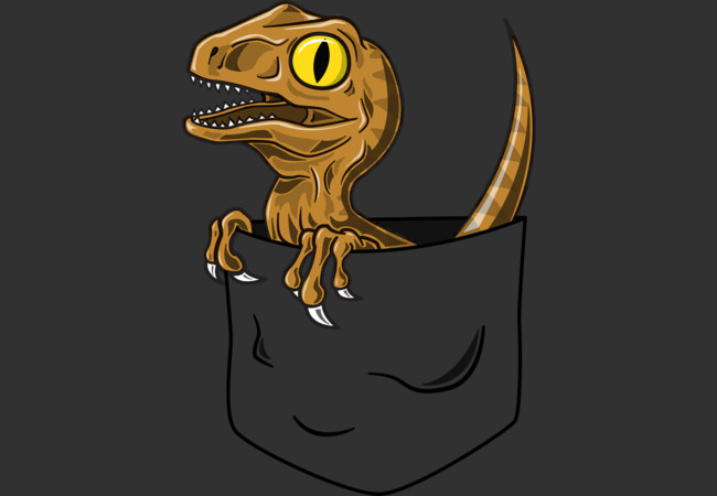 Pocket Raptor  Artwork