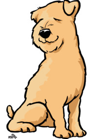 Wheaten terrier cartoon dog
