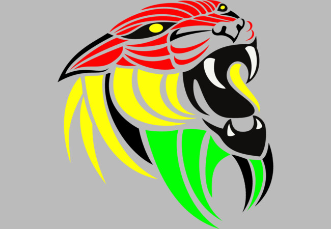 Reggae Music Lion Flag Colors  Artwork