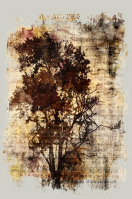 Trees Sing Of Time - Vintage Distressed