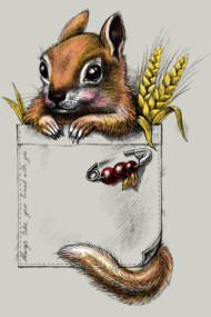 Pocket chipmunk