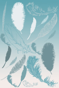 Aqua and White Feathers