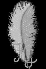 Fly Feather