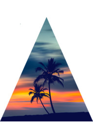 Palms and Sunset Triangle