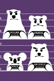 One-Color Bear Gang