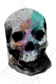 Color Splash Skull