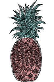 Pineapple Sketch Version 2